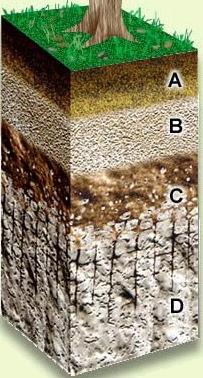 2 desertizaci n y gesti n del suelo for Como se forma y desarrolla el suelo